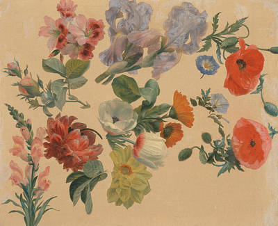 Painting - Studies Of Summer Flowers by Jacques-Laurent Agasse