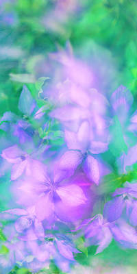 Photograph - Summer Impression Series Panorama - Flowers by Ranjay Mitra