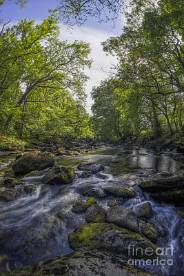 Photograph - Summer River by Ian Mitchell