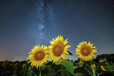 Sunflower Galaxy Art Print by Ryan Heffron