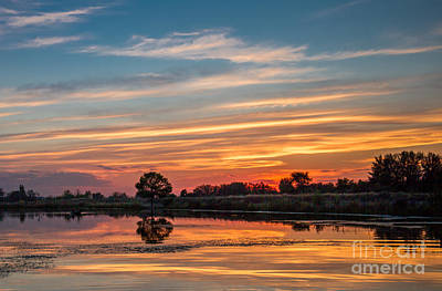 Sunset Reflections Art Print by Robert Bales