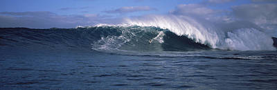Splashing In The Tide Photograph - Surfer In The Sea, Maui, Hawaii, Usa by Panoramic Images