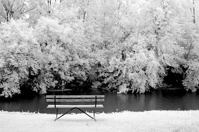 Photograph - The Bench by Paul W Faust - Impressions of Light