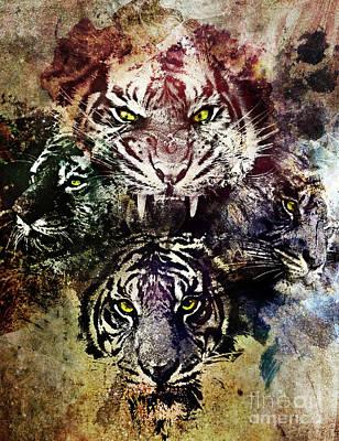 4 Tigers Art Print