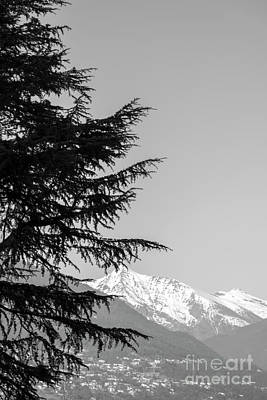 Photograph - Tree And Mountain by Mats Silvan