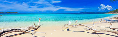 Sunny Day Photograph - Tropical Beach Malcapuya by MotHaiBaPhoto Prints