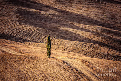 Tuscany Fields Autumn Landscape, Italy. Harvest Season Art Print