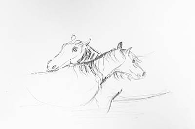 Drawing - Two Horse by Hae Kim