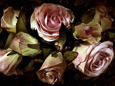 Still Life Digital Art - Vintage Rose by Jessica Jenney