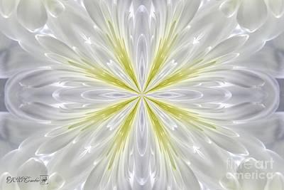 White Arctic Queen Kaleidoscope Print by J McCombie