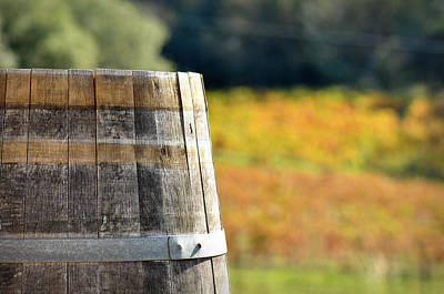 Beer Royalty-Free and Rights-Managed Images - Wine Barrel in Autumn by Brandon Bourdages