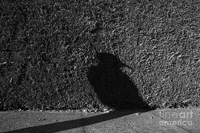 Photograph - Woman Wearing Bird Mask Silhouetted by Jim Corwin