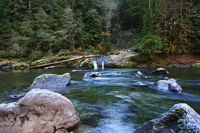 Photograph - Yellow Bottom Creek  by Gary Wing