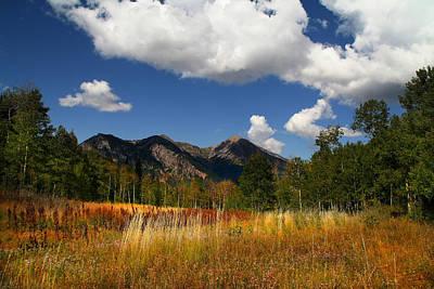 Mountain Meadow Original