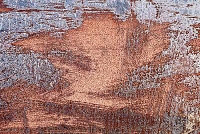 Rusty Metal Art Print by Tom Gowanlock