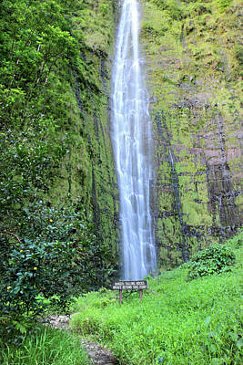 Guava Tree Photograph - 400 Foot Waimoku Falls Maui by Pierre Leclerc Photography
