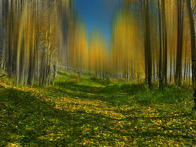 Photograph - 4064 by Peter Holme III