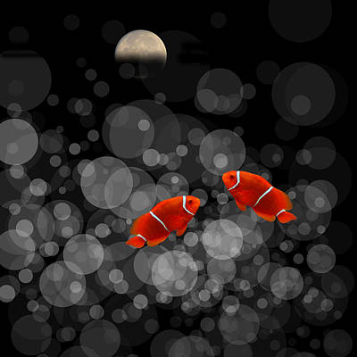 Clown Fish Photograph - 4082 by Peter Holme III