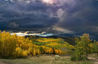 Photograph - 4083 by Peter Holme III