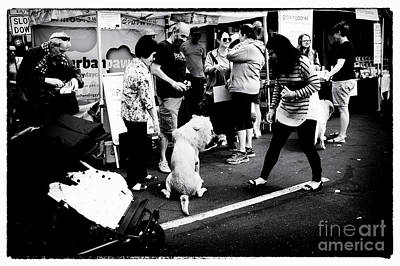 40th Anniversary Photograph - 40th Anniversary Of Yarraville Festival 00 2017 by Win Naing