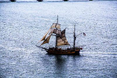 Spot Of Tea Royalty Free Images - Tall Ships Coos Bay Royalty-Free Image by Angus Hooper Iii
