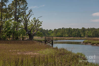 Photograph - Creekside Fishing Dock by Dale Powell
