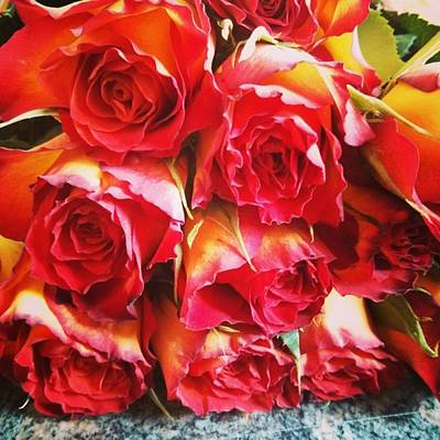 Bouquet Wall Art - Photograph - Colorful Bunch Of Roses by Sabine Meisel