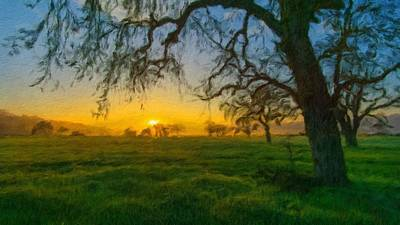 Tree Digital Art - Landscape Paintings by Usa Map