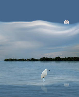 Photograph - 4218 by Peter Holme III