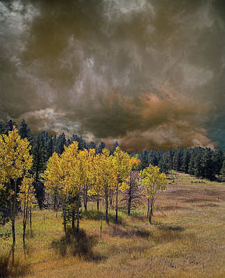 Photograph - 4228 by Peter Holme III