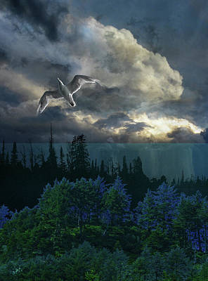 Photograph - 4251 by Peter Holme III