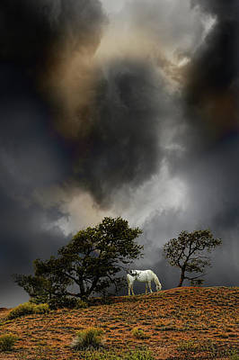 Photograph - 4263 by Peter Holme III