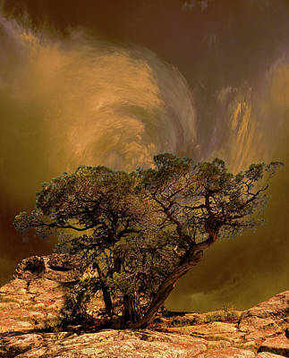 Photograph - 4335 by Peter Holme III