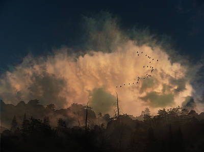 Print featuring the photograph 4382 by Peter Holme III