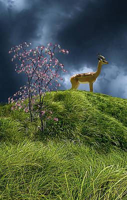 Print featuring the photograph 4388 by Peter Holme III