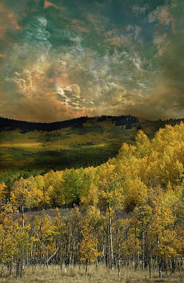 Art Print featuring the photograph 4394 by Peter Holme III