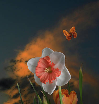 Photograph - 4413 by Peter Holme III