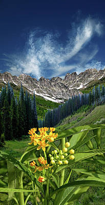 Art Print featuring the photograph 4415 by Peter Holme III