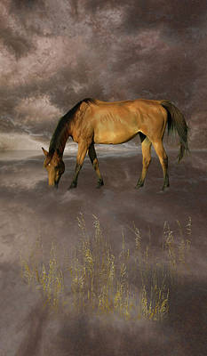Photograph - 4447 by Peter Holme III
