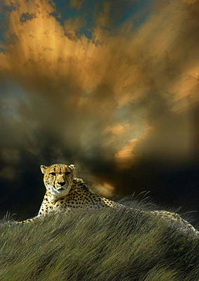 Photograph - 4452 by Peter Holme III