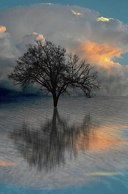Photograph - 4507 by Peter Holme III