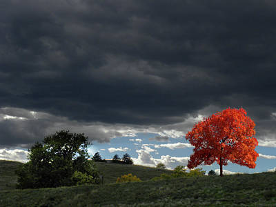 Photograph - 4599 by Peter Holme III