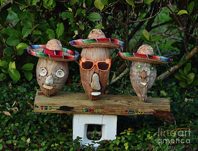 Photograph - 47- The Three Amigos by Joseph Keane