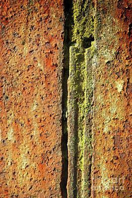 Photograph - Rusty Metal by Tom Gowanlock