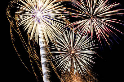 Photograph - 4th Of July Fireworks by Joni Eskridge