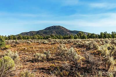 Photograph - Arizona Landscape by Doug Long