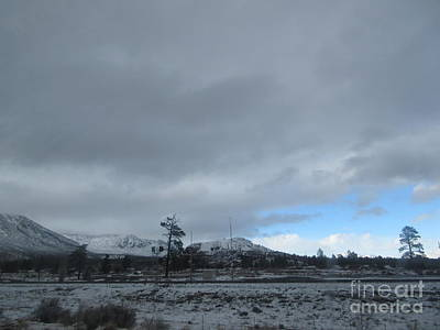 Animal Surreal - Arizona Mountain Landscape by Frederick Holiday