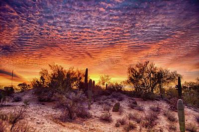 Arizona Sunrise Art Print