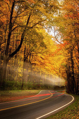Photograph - Autumn Drive by Andrew Soundarajan