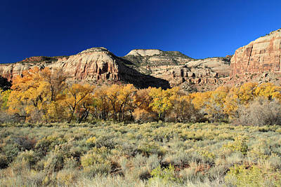 Photograph - Autumn In Canyonlands National Park by Pierre Leclerc Photography
